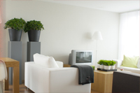 Painting and Decorating in Finchley Road - NW3